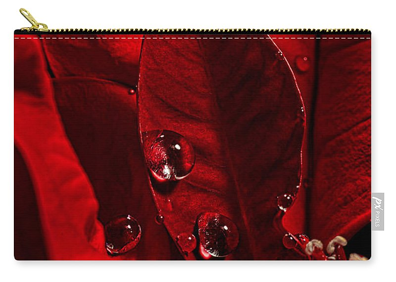 Poinsettia Carry-all Pouch featuring the photograph Christmas Velvet by Christopher Holmes