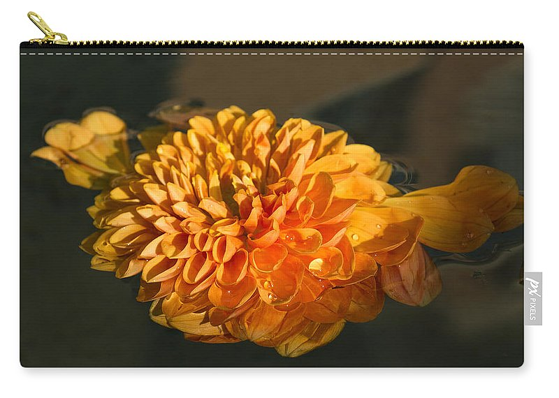 Georgia Mizuleva Carry-all Pouch featuring the photograph Chrysanthemum Gently Floating In The Fountain Of Campo De Fiori - Rome - Italy by Georgia Mizuleva
