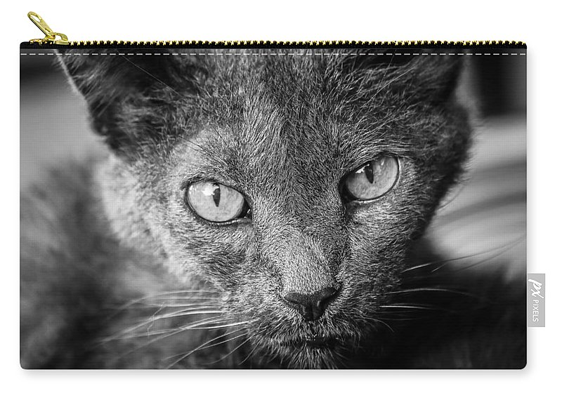 Animal Carry-all Pouch featuring the photograph Church by Mark McDaniel