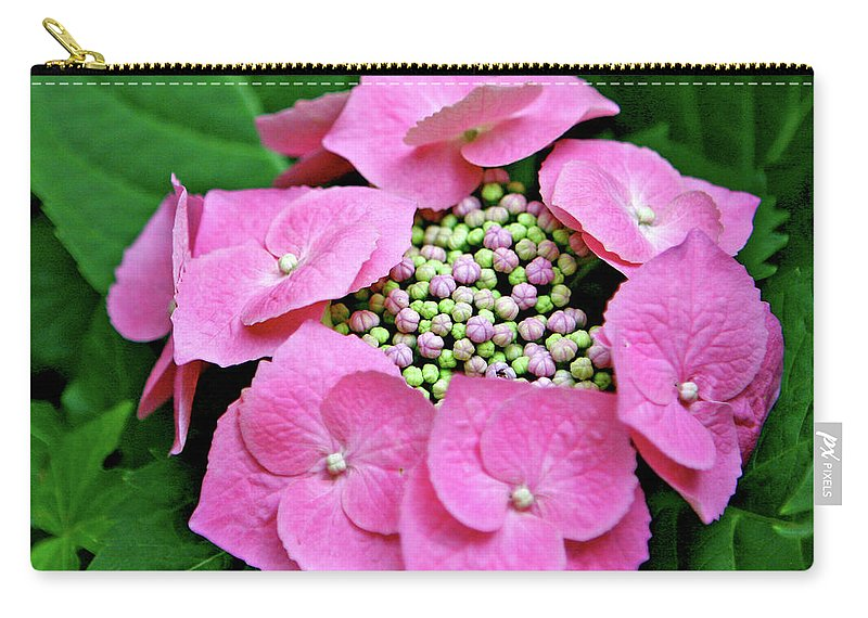 Hydrangea Carry-all Pouch featuring the photograph Circle Of Friends by Art Block Collections