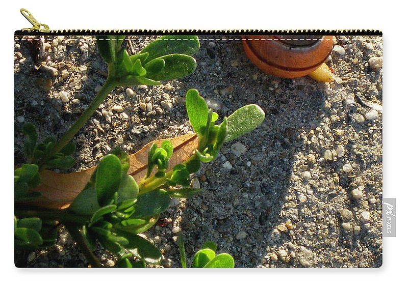 City Carry-all Pouch featuring the photograph City Snail From Above by Kenny Glotfelty