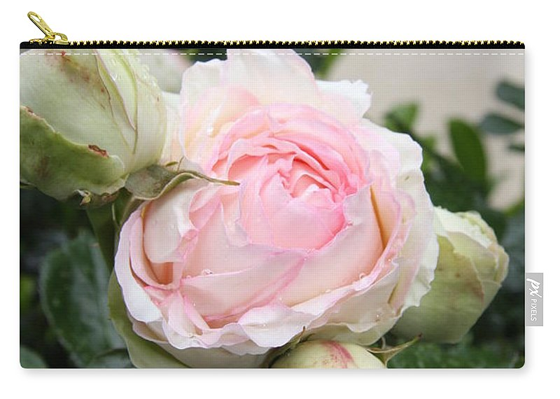 Roses Carry-all Pouch featuring the photograph Classic Rose by Christiane Schulze Art And Photography