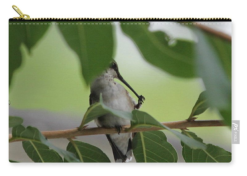 Birds Carry-all Pouch featuring the photograph Cleaning Time by Reid Callaway
