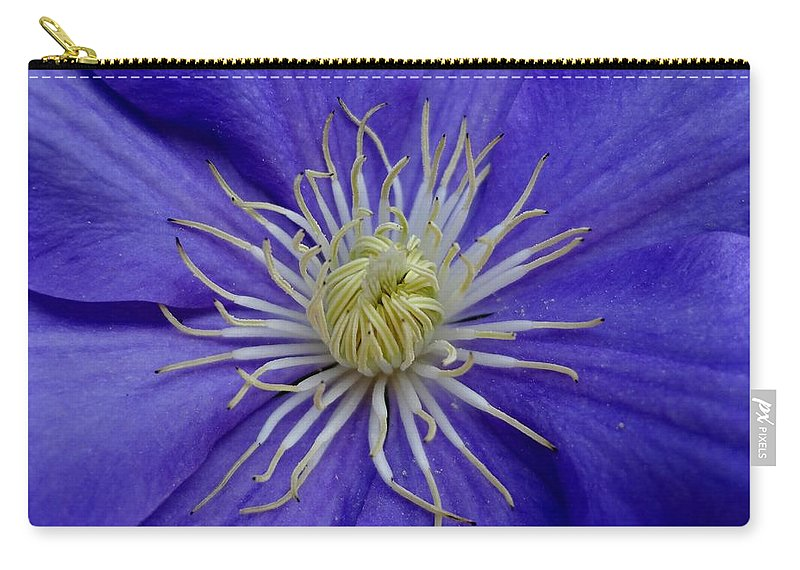 Clematis Carry-all Pouch featuring the photograph Clematis Beauty by Holton Powell