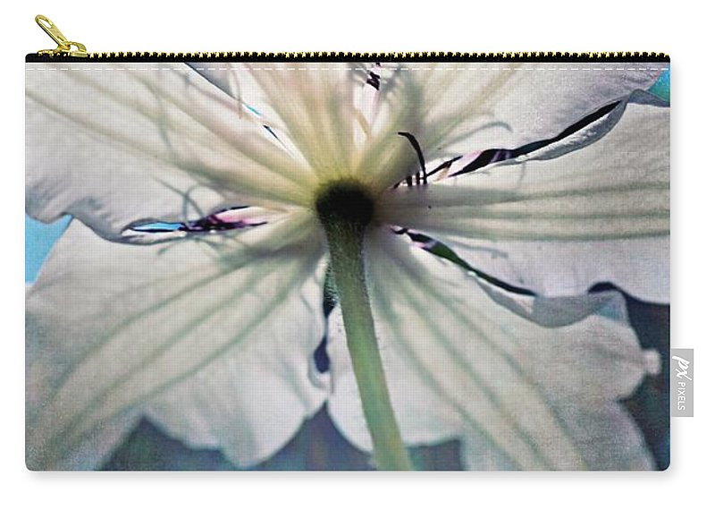 Clematis Carry-all Pouch featuring the photograph Clematis In Morning Sun by Michelle Calkins