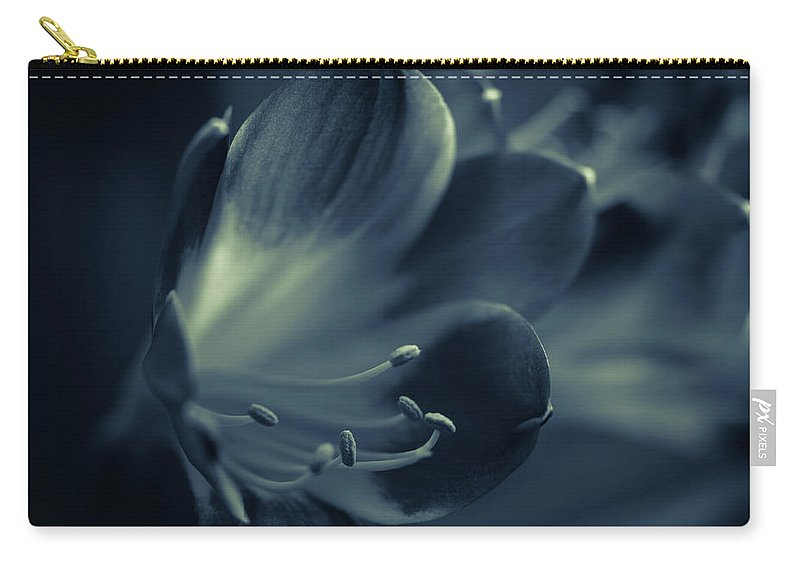 Clivia Miniata Carry-all Pouch featuring the photograph Clivia Miniata II by Andreas Levi