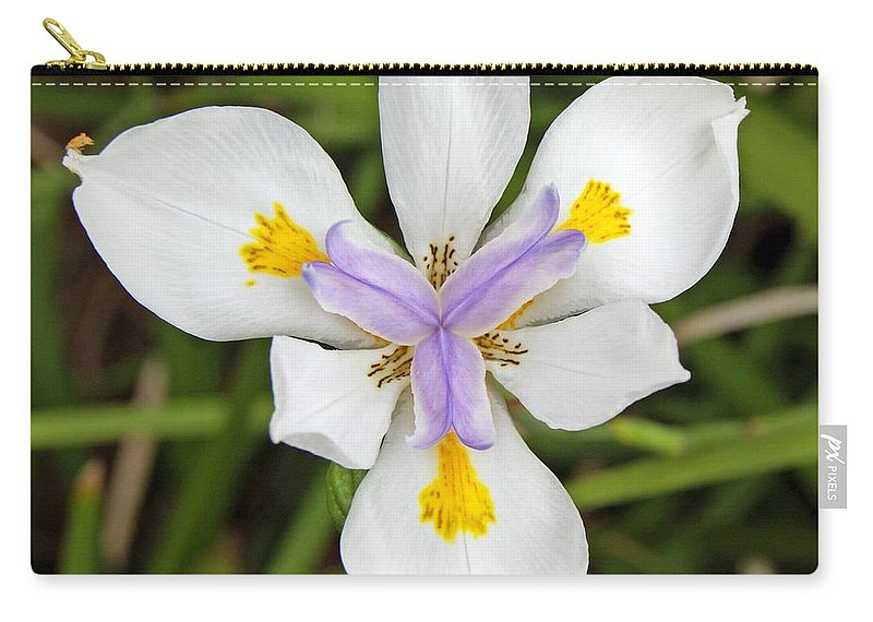 Dietes Carry-all Pouch featuring the photograph Close Up Of An Iris by Anonymous