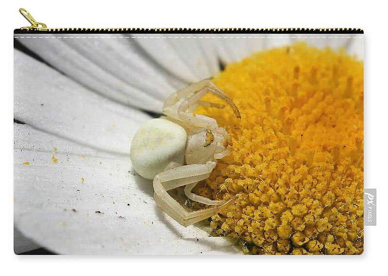 Crab Spider Carry-all Pouch featuring the photograph Close-up Of Crab Spider by Doris Potter