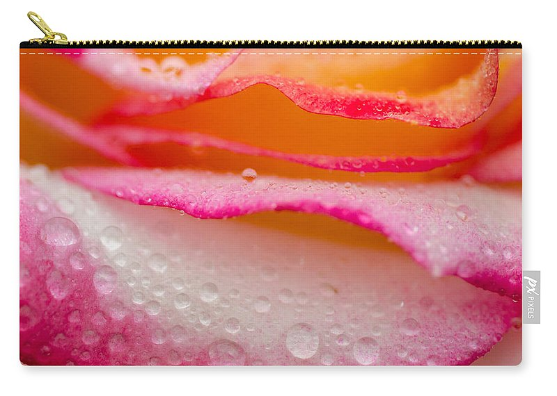 Roses Carry-all Pouch featuring the photograph Close Up Of Pink Rose Petails Covered Dew by TouTouke A Y