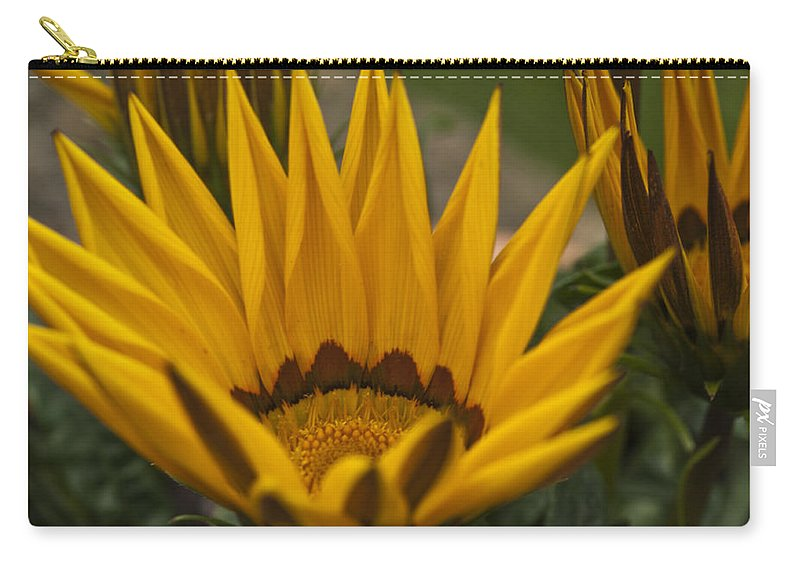 Yellow Carry-all Pouch featuring the photograph Closing Time by Steve Purnell