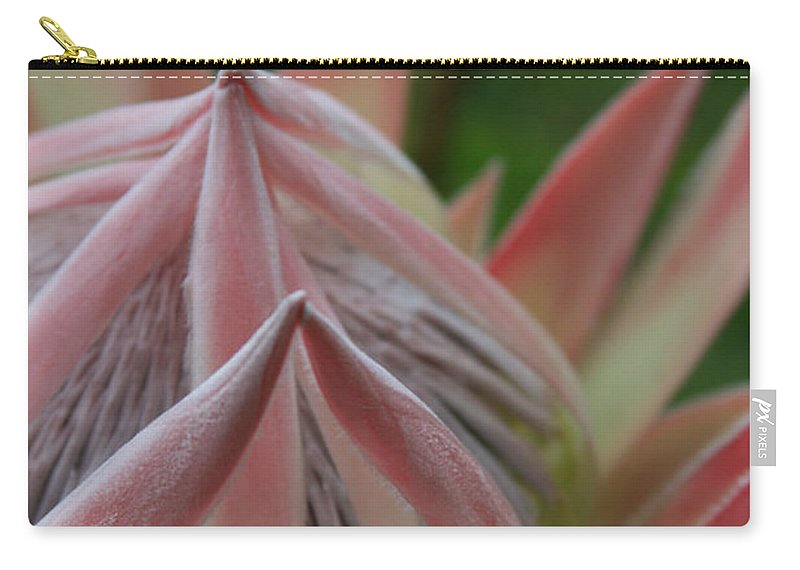 Aloha Carry-all Pouch featuring the photograph Cloths Of Heaven by Sharon Mau