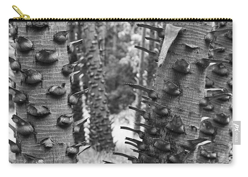 Trees Carry-all Pouch featuring the photograph Cluster- Black And White by Douglas Barnard