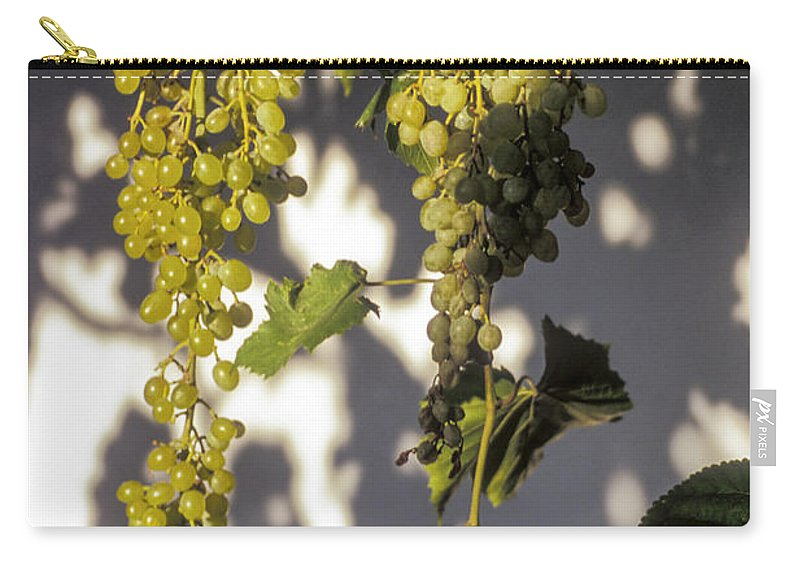 Sirince Turkey White Grapes Cluster Clusters Vine Vines Food Foods Grape Leaf Leaves Plant Plants Fresh Fruit Fruits Arbor Arbors Still Life Nature Carry-all Pouch featuring the photograph Clusters by Bob Phillips