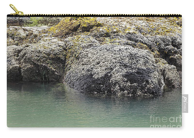 Attached Carry-all Pouch featuring the photograph Coast Ecosystems by Lee Serenethos