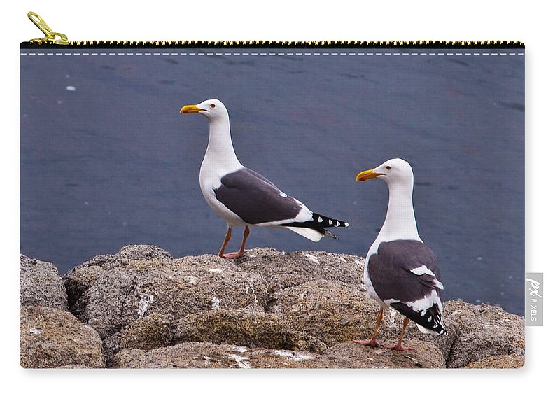 Couple Carry-all Pouch featuring the photograph Coastal Seagulls by Melinda Ledsome