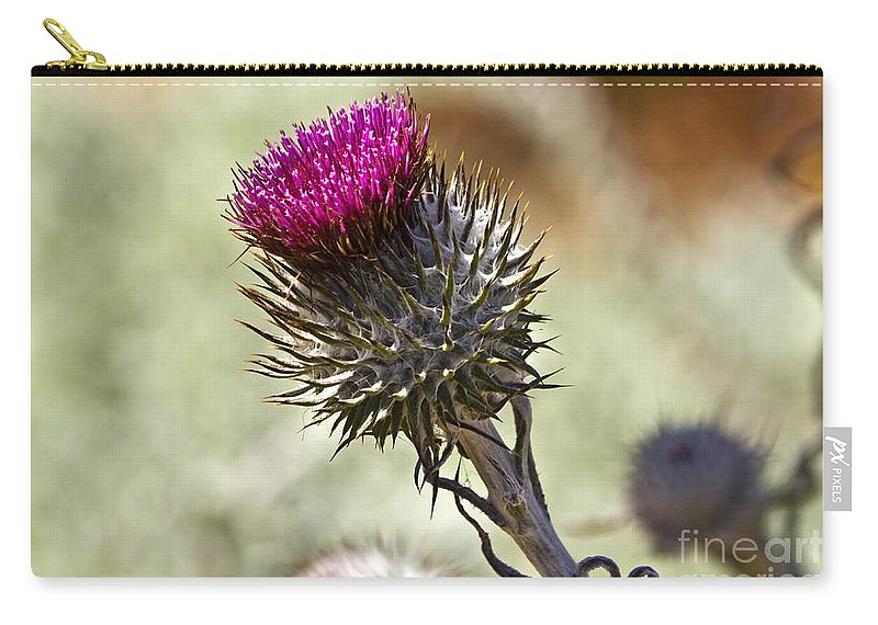 Brown Carry-all Pouch featuring the photograph Cobwebby Thistle by Kate Brown