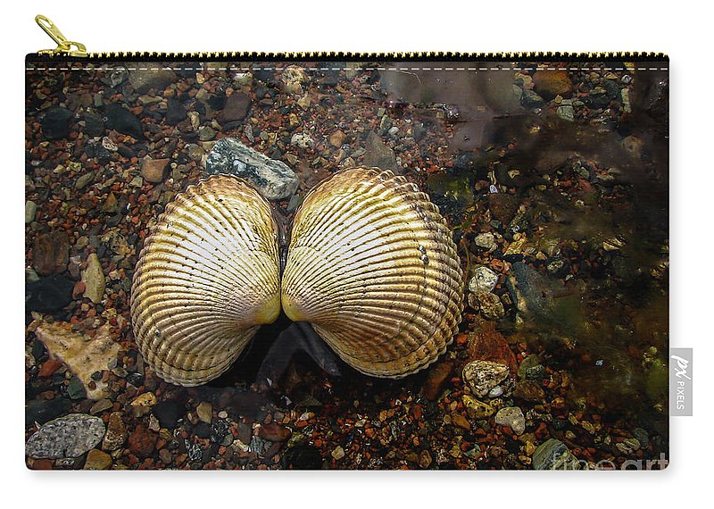 Acrosterigma Cignorum Carry-all Pouch featuring the photograph Cockle by Robert Bales
