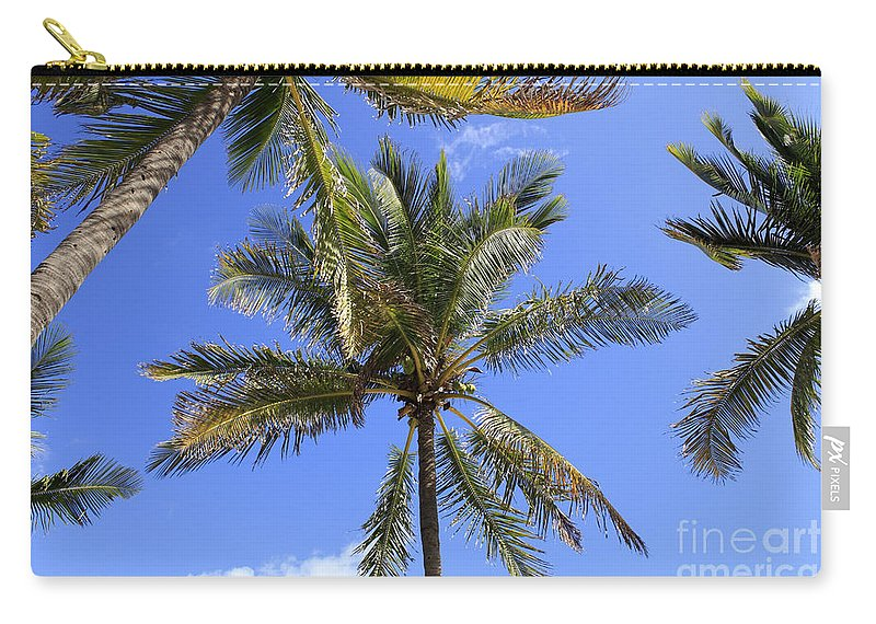Cocoanut Carry-all Pouch featuring the photograph Cocoanut Palm Trees Sky Background by Lee Serenethos
