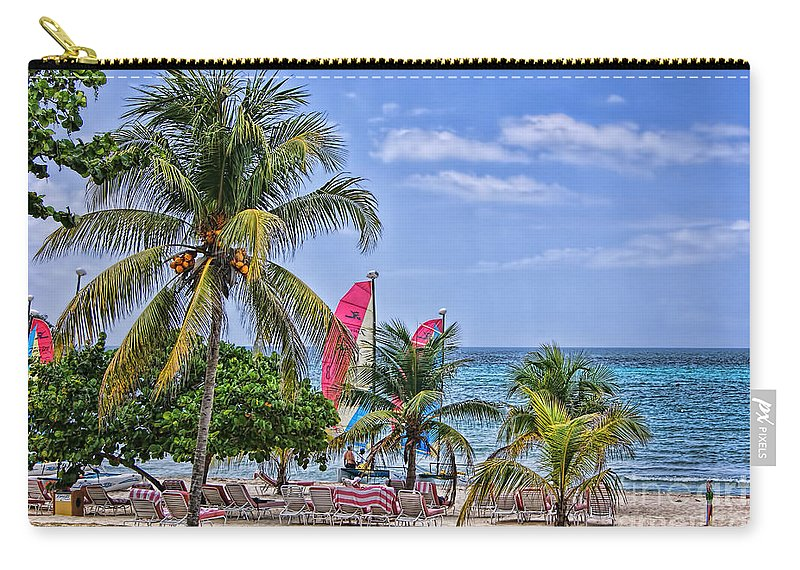 Coconut Tree Carry-all Pouch featuring the photograph Coconut Tree by Olga Hamilton