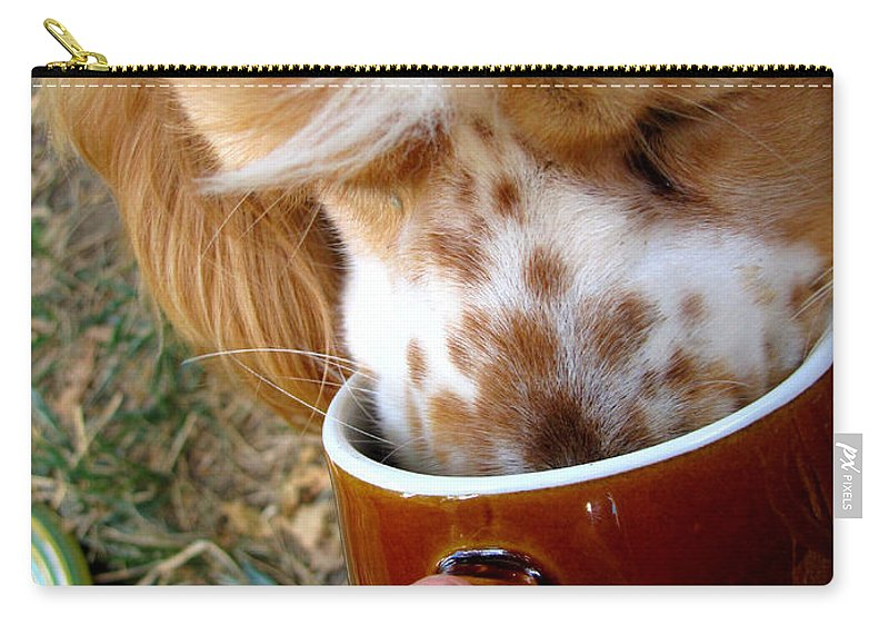 Animals Carry-all Pouch featuring the photograph Coffee Hound by Debbie Portwood
