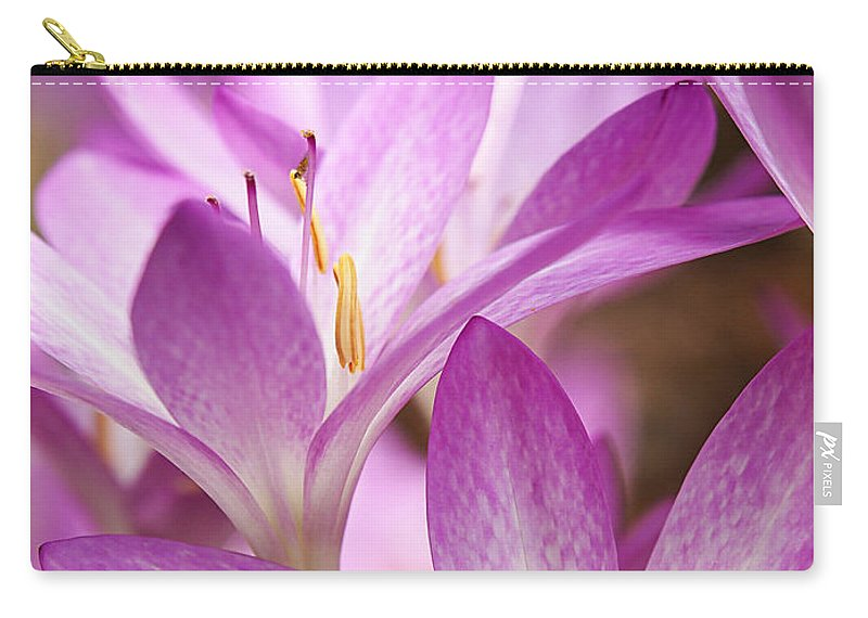 Purple Flower Carry-all Pouch featuring the photograph Colchicum Curves by Gill Billington