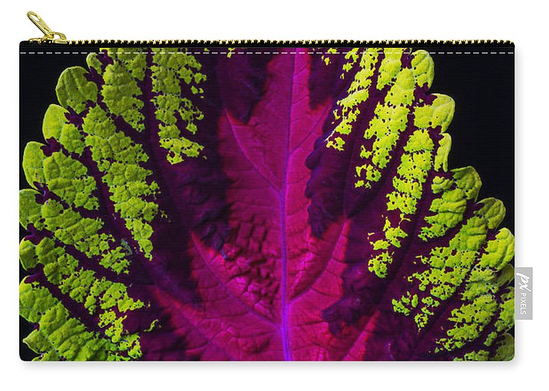 Cutting Carry-all Pouch featuring the photograph Coleus Leaf by Garry Gay