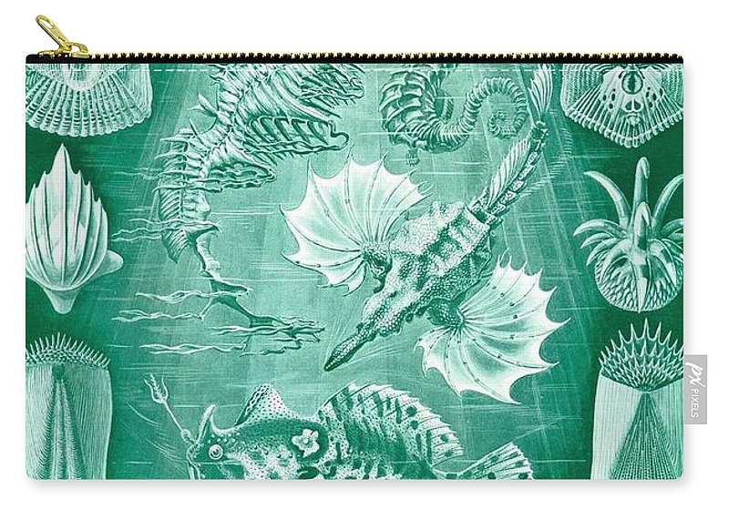 Taxonomy Carry-all Pouch featuring the drawing Collection Of Teleostei by Ernst Haeckel