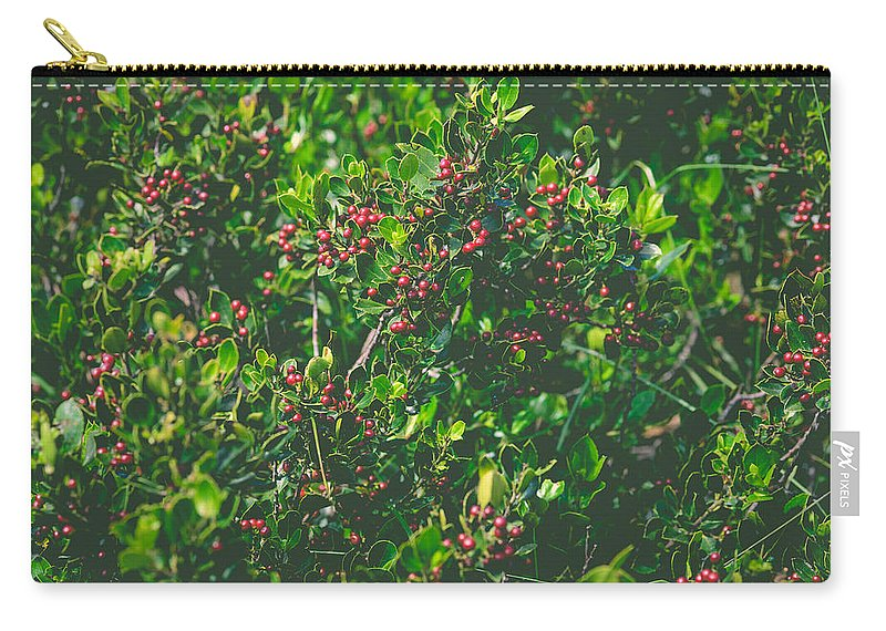 Red Carry-all Pouch featuring the photograph Color Harmony by Marco Oliveira