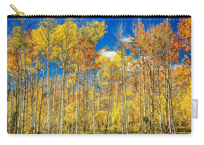 Aspen Carry-all Pouch featuring the photograph Colorful Colorado Autumn Aspen Trees by James BO Insogna
