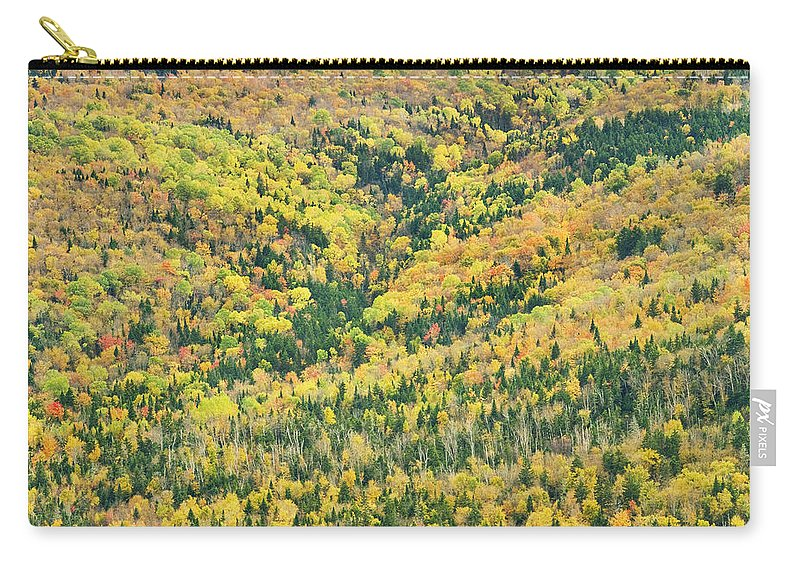 Landscape Carry-all Pouch featuring the photograph Colorful Fall Forest Near Rangeley Maine by Keith Webber Jr
