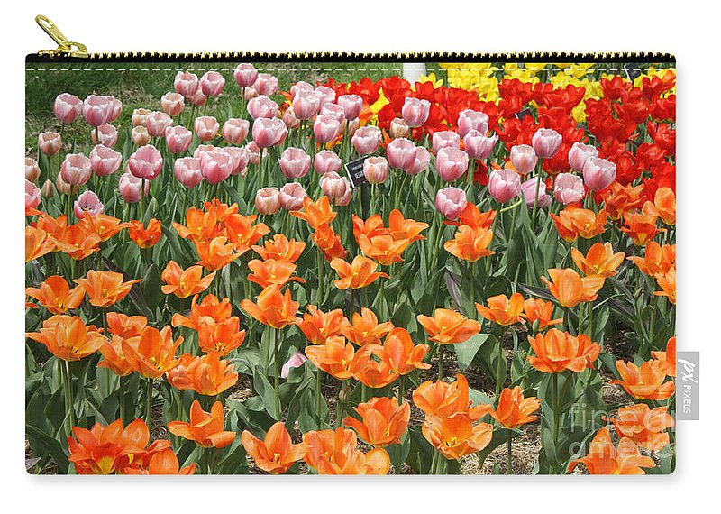 Colorful Flower Bed Carry-all Pouch featuring the photograph Colorful Flower Bed by John Telfer