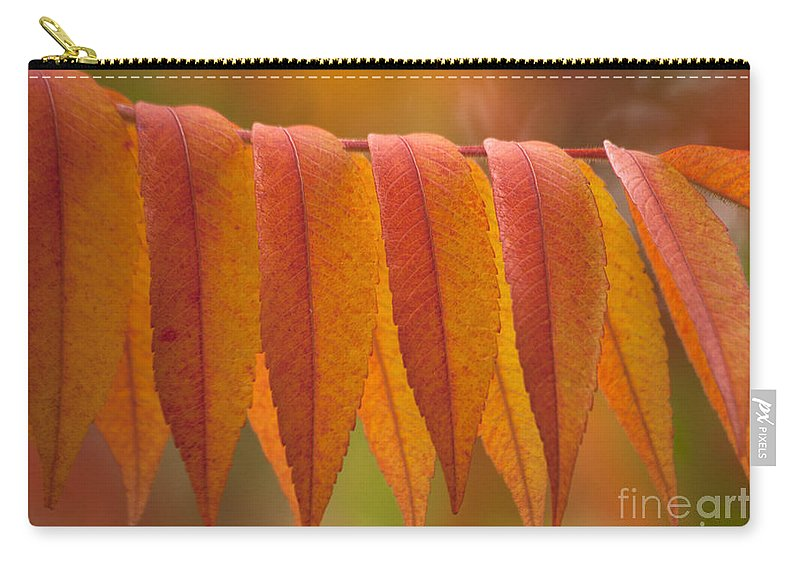 Heiko Carry-all Pouch featuring the photograph Colorful Sumac Foliage In Fall by Heiko Koehrer-Wagner