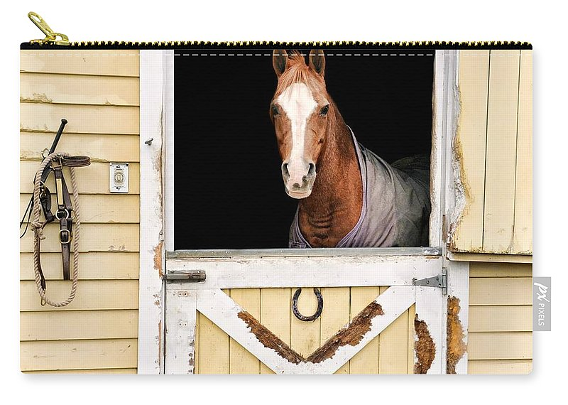 Horse Carry-all Pouch featuring the photograph Colt by Diana Angstadt