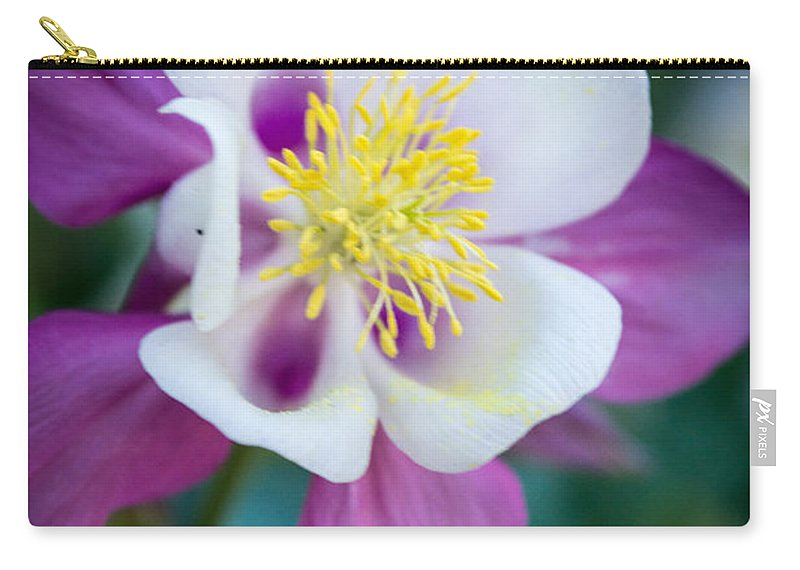 Columbine Carry-all Pouch featuring the photograph Columbine 3 by Debra Powell