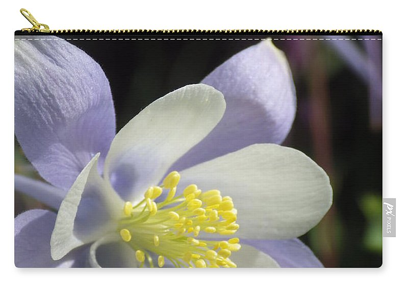 Columbines Carry-all Pouch featuring the photograph Columbine by Tonya Hance