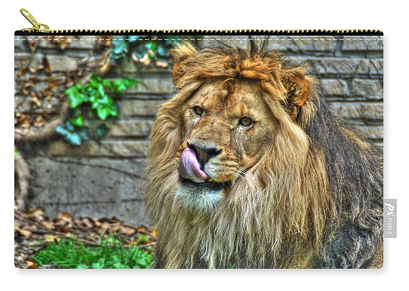 Lion Carry-all Pouch featuring the photograph Come A Lil Closer...mmmmm... by Michael Frank Jr