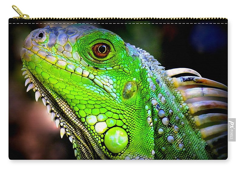 Iguanas Carry-all Pouch featuring the photograph Come A Little Closer by Karen Wiles