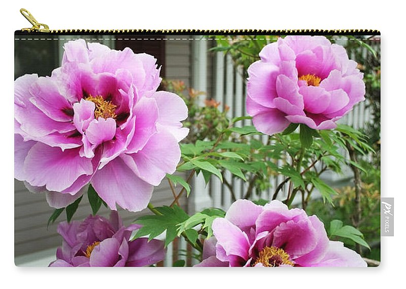 Flowers Carry-all Pouch featuring the photograph Come Stay A While by Barbara McMahon
