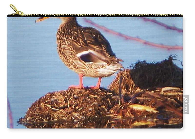 Comedian Carry-all Pouch featuring the photograph Comedian Duck by Eric Schiabor