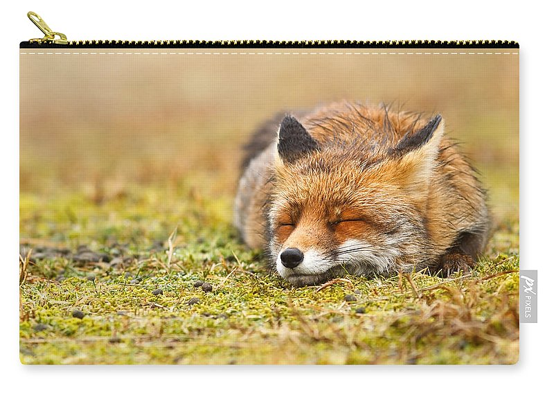 Fox Carry-all Pouch featuring the photograph Comfortably Fox by Roeselien Raimond