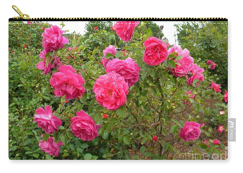 Flowers Carry-all Pouch featuring the photograph Coming Up Rosy by Matthew Seufer