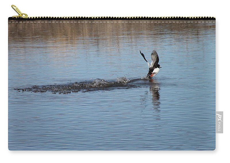 Ducks Carry-all Pouch featuring the photograph Common Goldeneye Takeoff by Wayne Williams