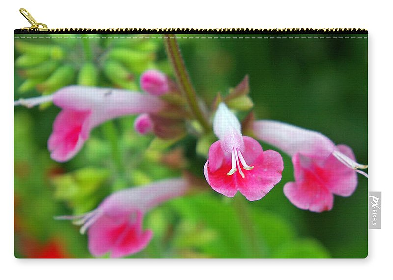 Skullcap Carry-all Pouch featuring the photograph Common Large Skullcap by Nancy L Marshall