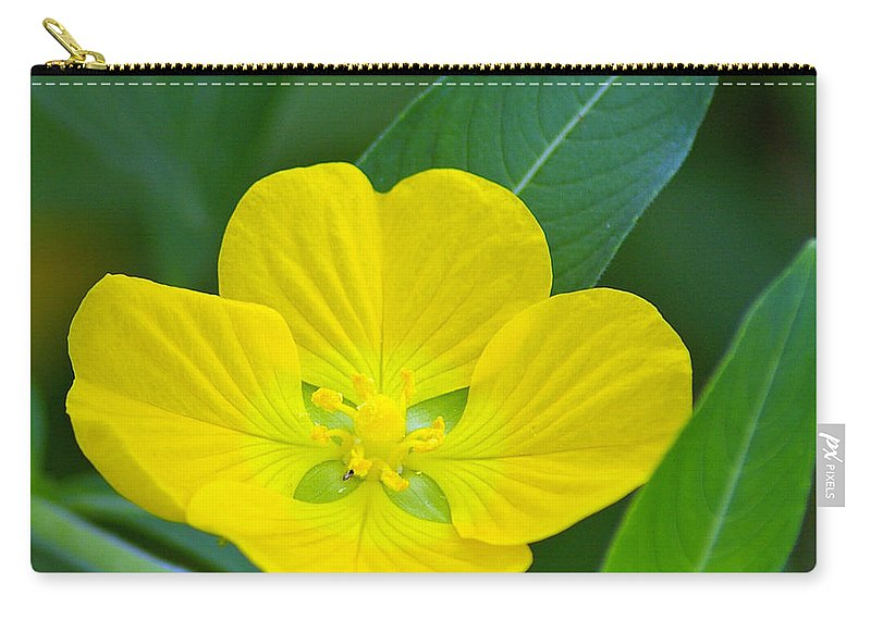 Primrose Carry-all Pouch featuring the photograph Common Primrose Willow 1 by Nancy L Marshall