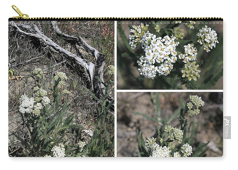 Carry-all Pouch featuring the photograph Common Yarrow Collage by Carol Groenen