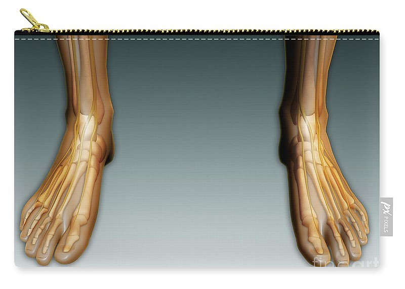 Horizontal Carry-all Pouch featuring the digital art Conceptual Image Of Human Legs And Feet by Stocktrek Images