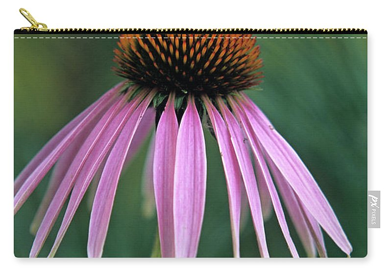 Cone Flower Carry-all Pouch featuring the photograph Cone Flower In Vertical Format by John Harmon