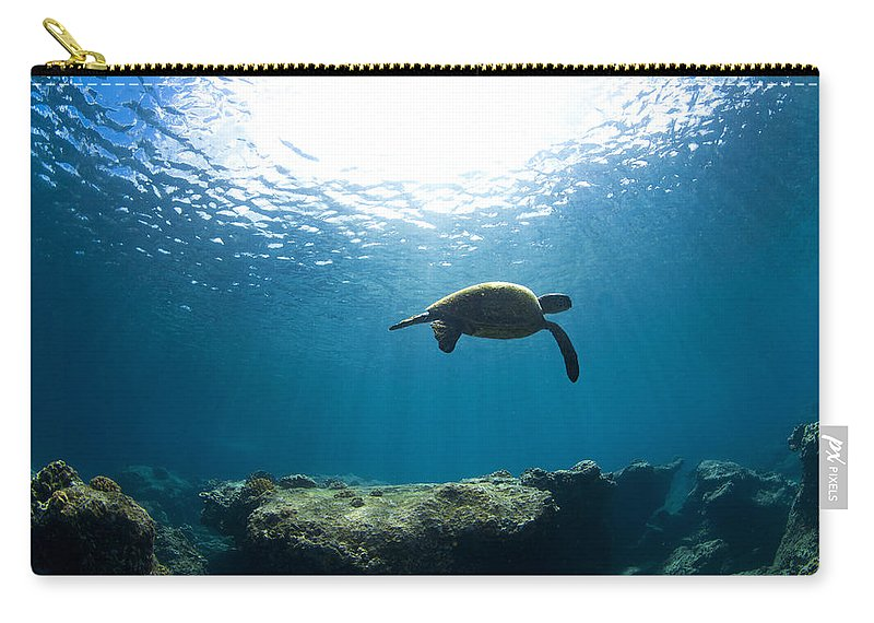 Turtle Carry-all Pouch featuring the photograph Contemplation by Sean Davey