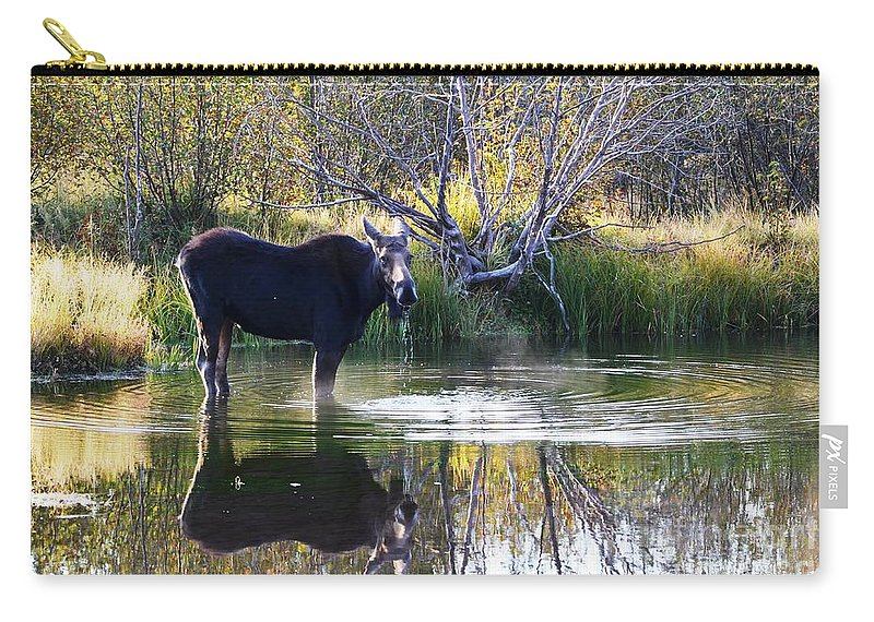 Moose Carry-all Pouch featuring the photograph Cool Fall Air by Deanna Cagle