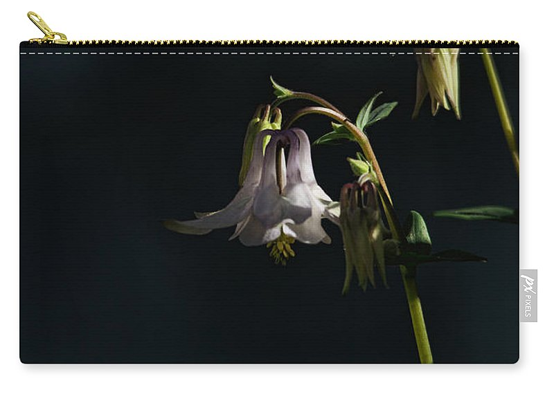 Columbine Carry-all Pouch featuring the photograph Cooling Shade by Susan Capuano